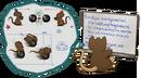 Illustration du Lua.png