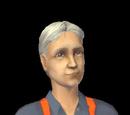 Sims pais