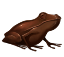Chocogrenouille