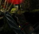 Blutdorn