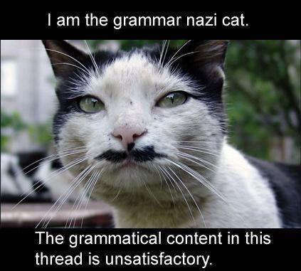 LOLcat_-_Grammar_Nazi_Cat.jpg