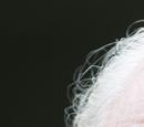 Hershel Greene (Serial TV)