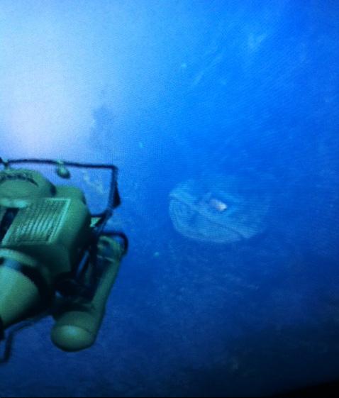 [تصویر:  UnderwaterHatch-GTAV.jpg]