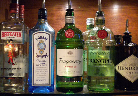 Gin cocktails wiki want to learn how to make cocktails for Best mix with gin
