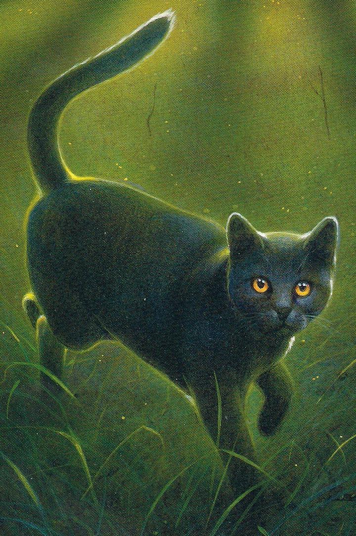 Warrior Cats Graywing