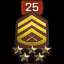Rank 25