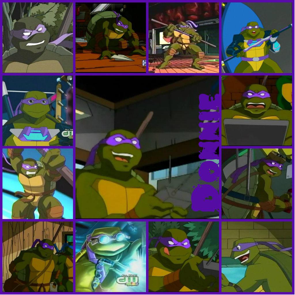 Raphael Tmnt 2003 Tmnt donnie collage 2003