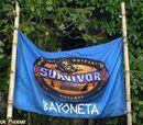 Bayoneta