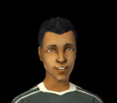 Sims with mullets (fanon)