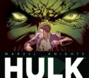 Marvel Knights: Hulk Vol 1 2