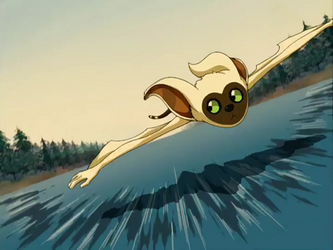 Flying lemur avatar - photo#9