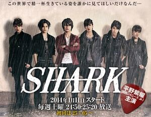 new-shark capitulos completos