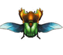 Kurudoron (MH4)