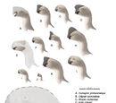 Oviraptorosauria