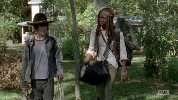 http://img4.wikia.nocookie.net/__cb20140225073407/walkingdead/images/e/e7/CarlandMichonne%28Claimed%2921.png