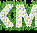 Pikmin (universo)