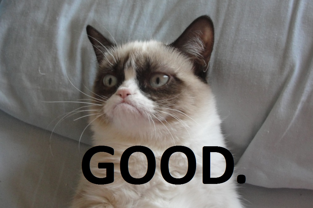 http://img4.wikia.nocookie.net/__cb20140306235947/clubpenguinpookie/images/3/32/Grumpy_Cat_Good.jpg