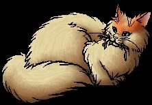 Warrior Cat Rp Mc