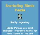 Snorkeling Biotic Panda