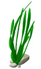 Image - Seaweed-Sprite...
