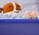Rubble/Gallery/Pups Make a Splash