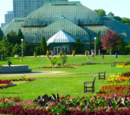 Amity/Park Conservatory