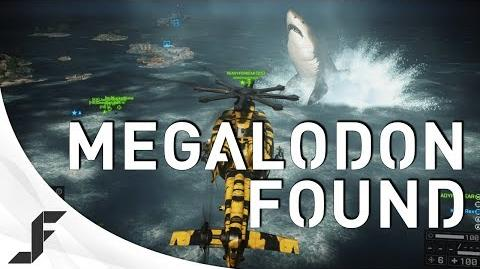 Awyman13/Megalodon Found!