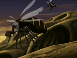 Sistema de Animais 250px-Buzzard_wasps