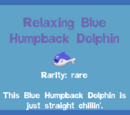 Relaxing Blue Humpback Dolphin