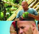 Tony Vlachos/Gallery
