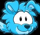 Blue Border Collie