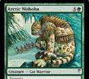 Arctic Nishoba