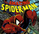 The Amazing Spider-Man (1991 video game)
