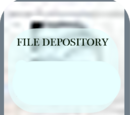 File Depository