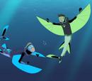 Flying Fish Power