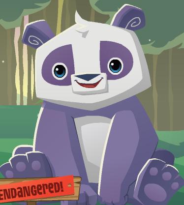 Panda - Animal Jam Wiki