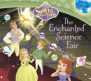 The Enchanted Science Fair (book)