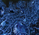 Investigación de Metroid Prime