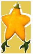 paopu fruit exotic fruits