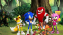 Sonic, Tails, Knuckles, Amy and Sticks.png