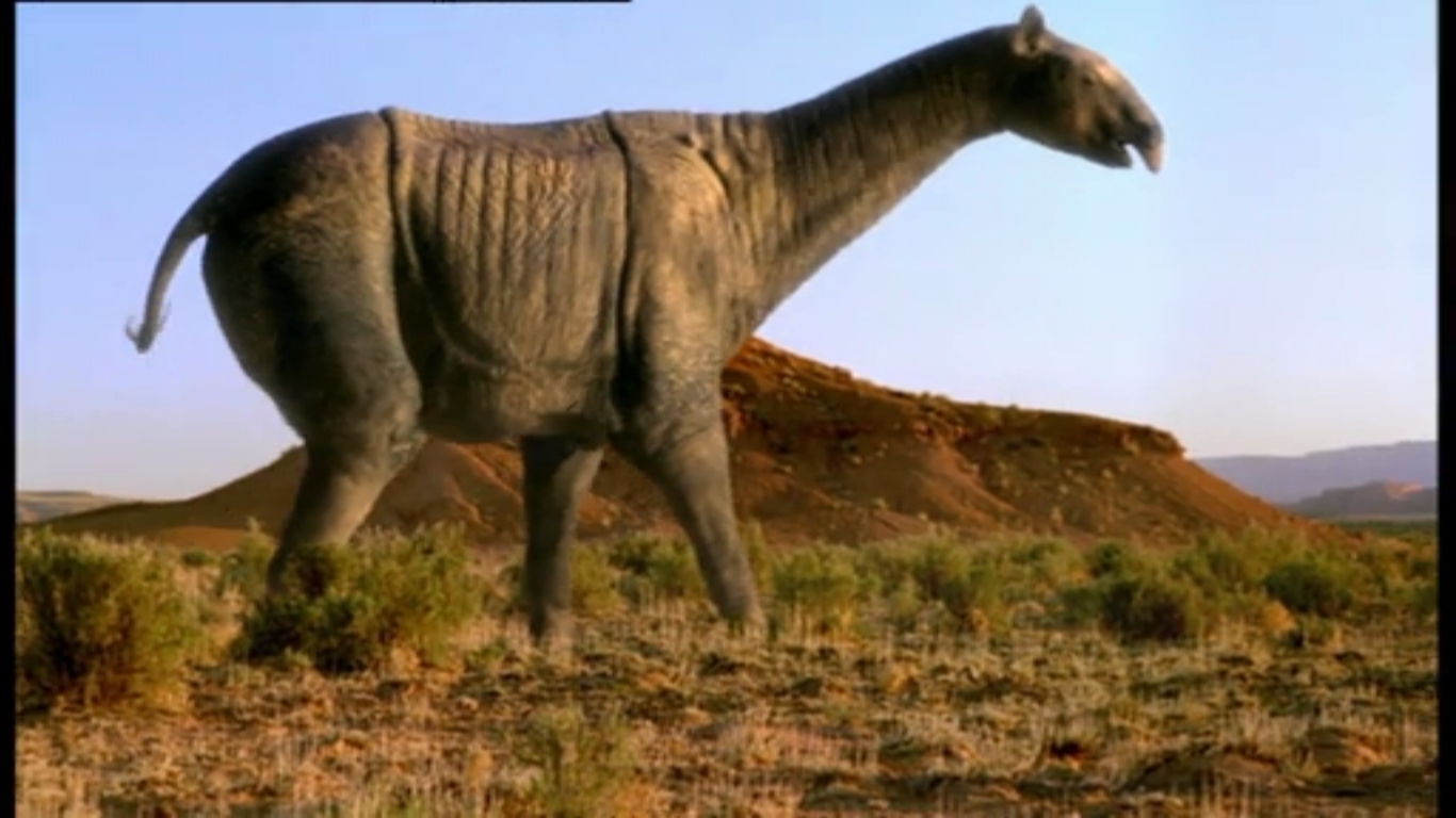 Indricotherium - Walking With Wikis - the free Walking ...