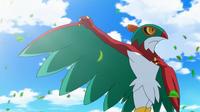 ¡El campeón del bosque! ¡¡Hawlucha aparece!! Pokemon XY
