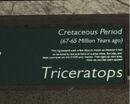 Libertonian-TLAD-FossilTriceratopsPlaque.jpg