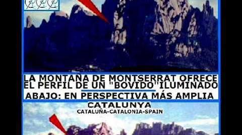 BULL-TOTEM CULT IN THE PREHISTORY OF CATALONIA