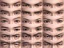 Male Eyes (DWN).png