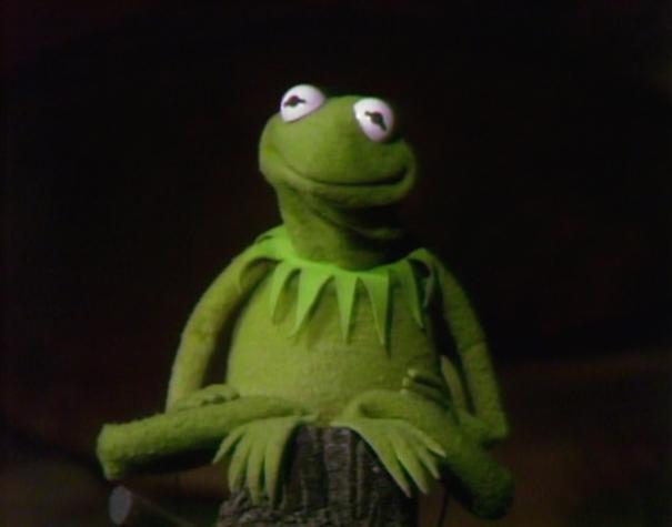 Sesame Street Kermit Frog