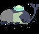 Escarabajo Terrestre