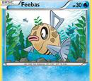 Feebas (Flashfire 22)