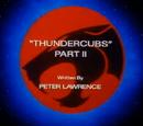 ThunderCubs - Part II