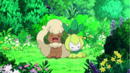 Hatterly Whimsicott Petilil.png